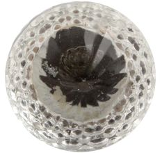 Clear Glass Cabinet Knob Online