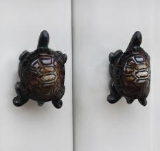 Tortoise Knob
