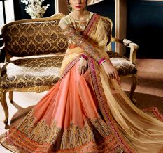 Embroidered Half And Half Net Saree With Blouse Material