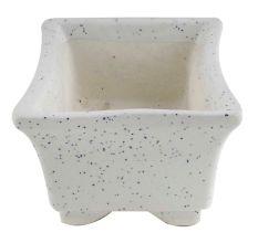 Rectangular White Planter Pot With Small White Dots